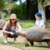 Feeding Giant Turtle